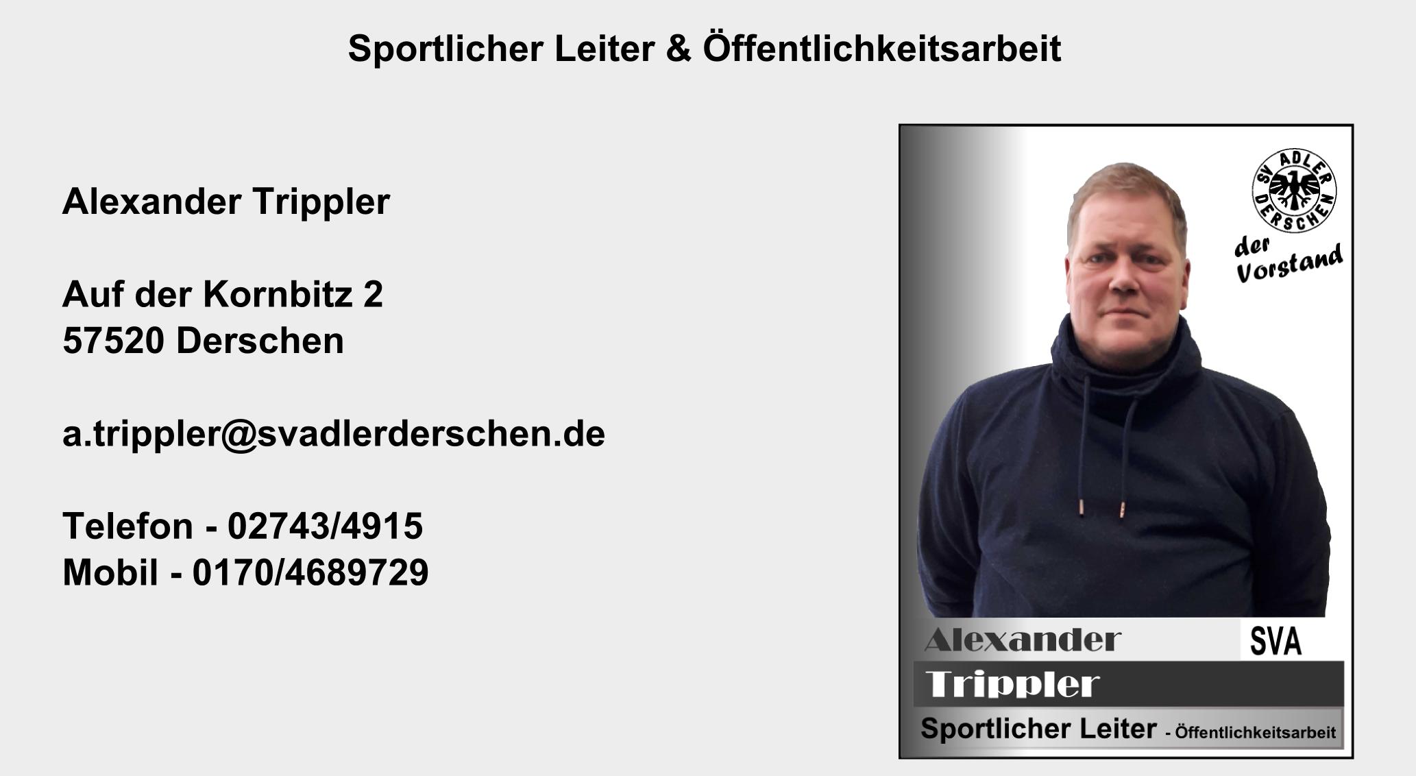 Charmant Schriftsteller Direktor Lebenslauf Ideen - Beispiel ...